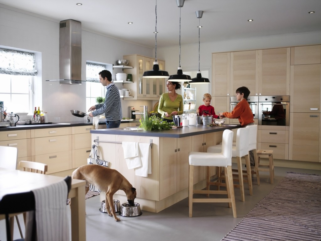 Family Kitchen Design Ideas For Cooking And Entertaining: 5 Tips For Enduring Your Kitchen Renovation