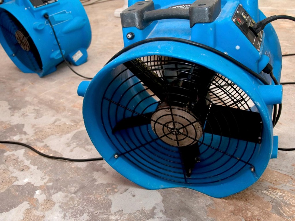 Floor Drying Fans : Tips to prevent mold under water damaged carpets
