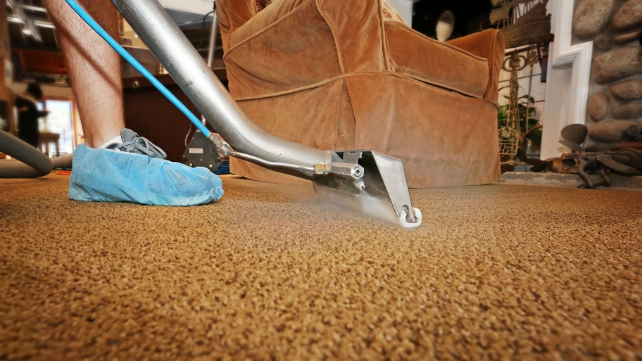 8 Tips To Prevent Mold Under Water Damaged Carpets